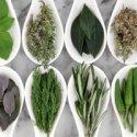 Gyógynövény- és természetes alapú termékek
