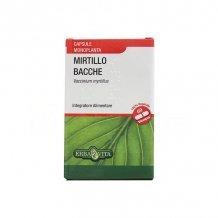 Feketeáfonya + inulin kapszula 60db /natur tanya/
