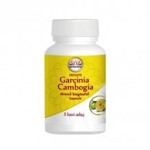Dehlvis garcinia cambogia kapszula 90db